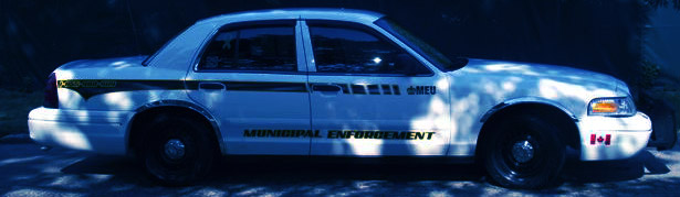 Municipal Enforcement